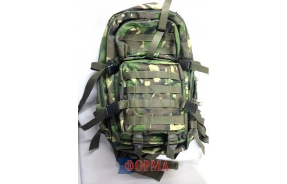 Рюкзак мультикам